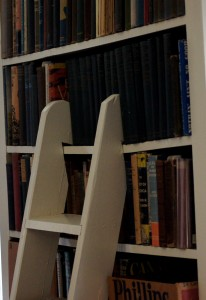 Sandburg bookshelf with ladder