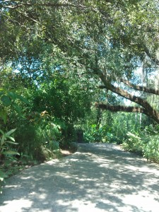 path at leu gardens
