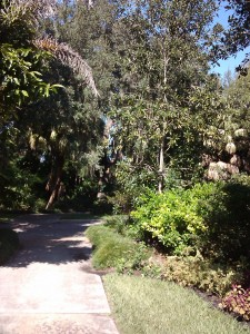 path THROUGH LEU GARDENS
